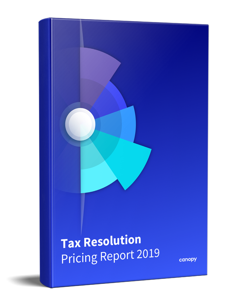 Large Cover Image of Tax Resolution Pricing Report 2019_478_x_623